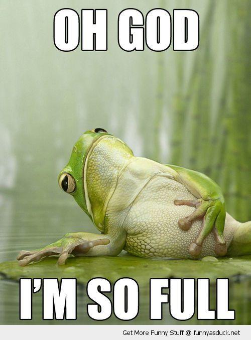 Frog-Full